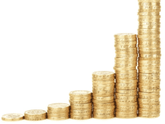 Tomas Vargas Harvard   Choose Low Risk Investment