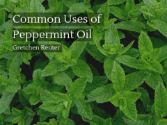 Common Uses of Peppermint Oil