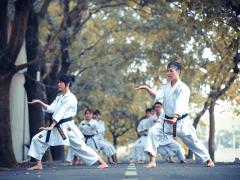 Uncommon European Martial Arts Styles