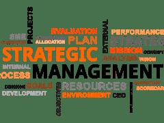 Tomas Vargas Explained Strategic Management