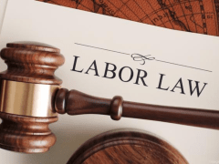 Ways to find a Labor Lawyer – Lina Franco