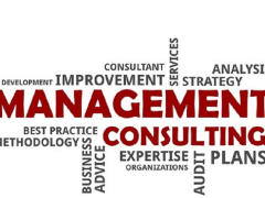 IVAN ZUBIAGA : Best management Consultant