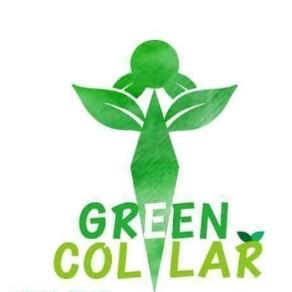 green colar.jpg