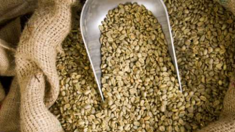 raw-green-coffee-beans-in-bag.jpg