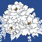 avatar54.jpg