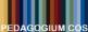 pedagogium_cos.jpg
