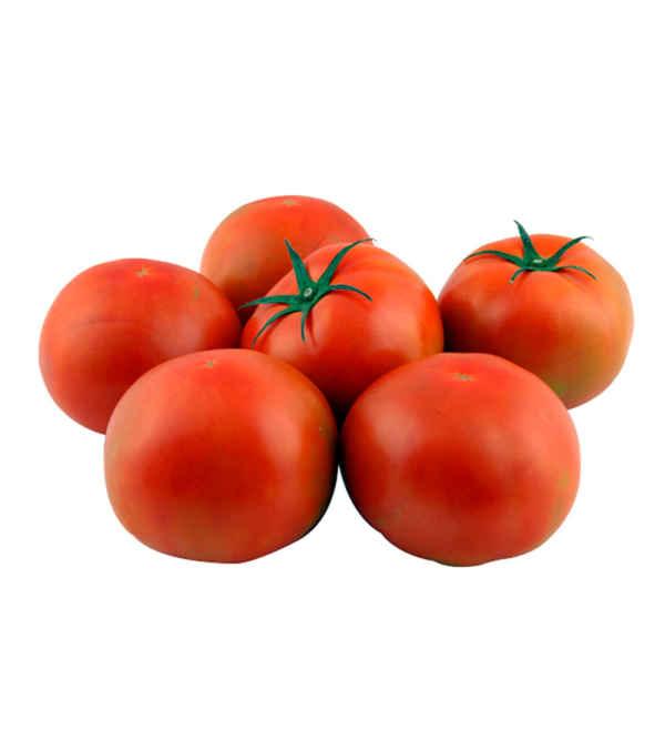 Tomate premium
