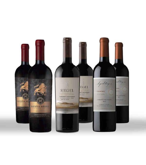 6 Pack Vinos Bestia Negra , Siegel Singlevineyard , Apaltagua Envero