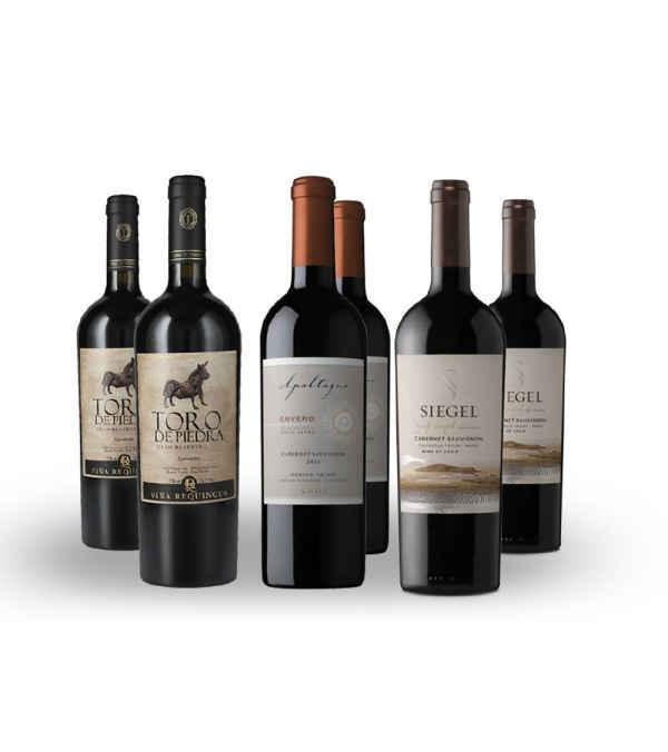6 Pack Vinos Toro de Piedra , Siegel SingleVineyard , Apaltagua Envero