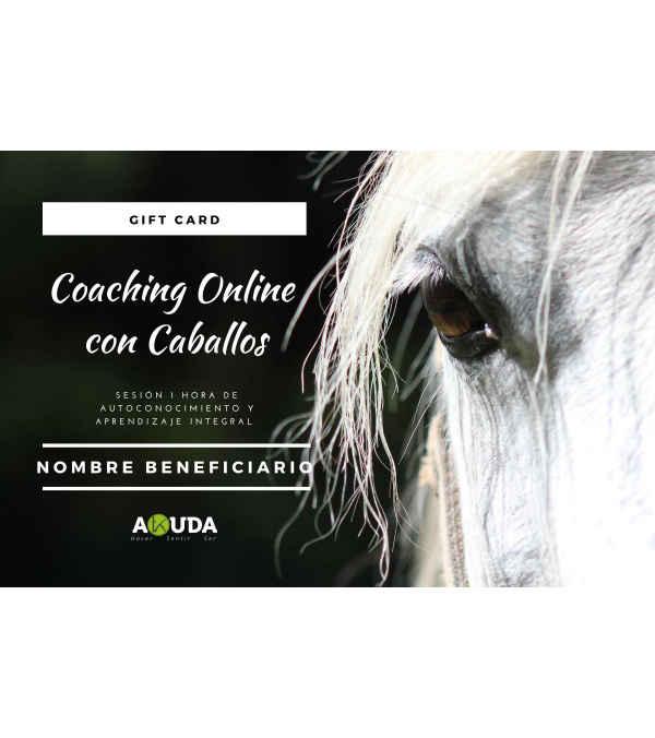 1 SESIÓN DE COACHING ONLINE CON CABALLOS