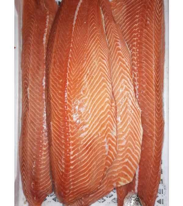 Filete de Salmon del Atlántico (Salmon Salar)