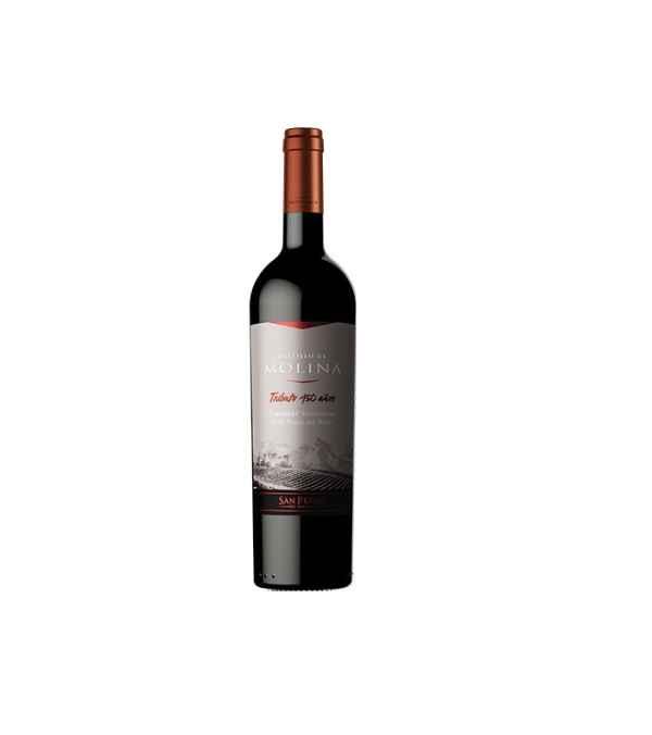 Castillo De Molina Tributo Gran Reserva Cabernet Sauvignon 12 Botellas