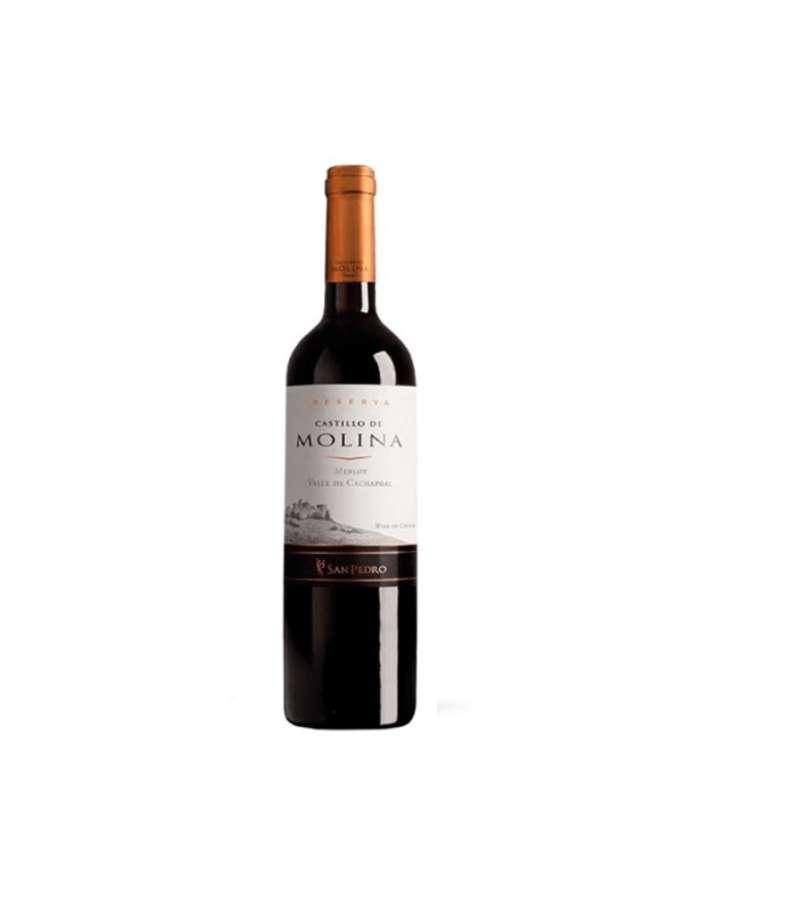 Castillo De Molina Merlot 6 Botellas