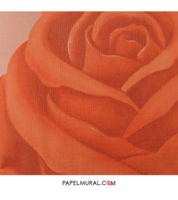 Papel Mural Rosa Naranja | RETRO