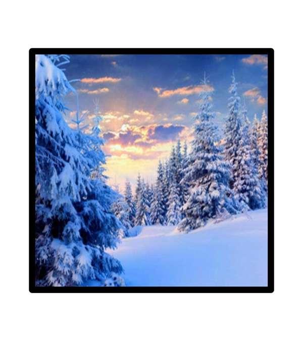 Pintura de Diamantes Diamond Painting Bosque Nevado 30x30 cms