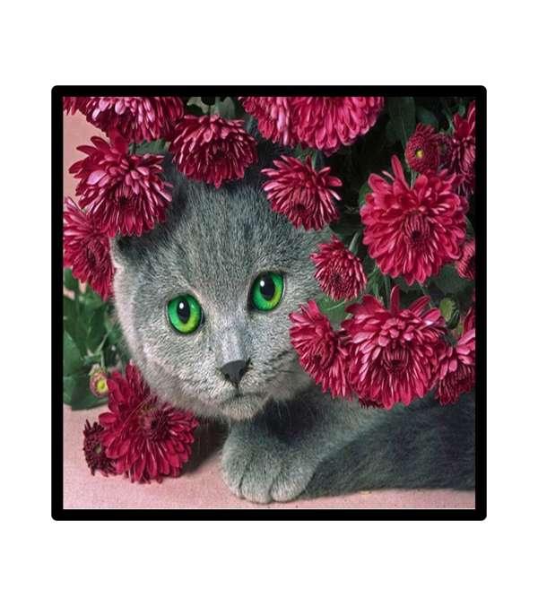 Pintura de Diamantes Diamond Painting Gato Floreado 30x30 cms