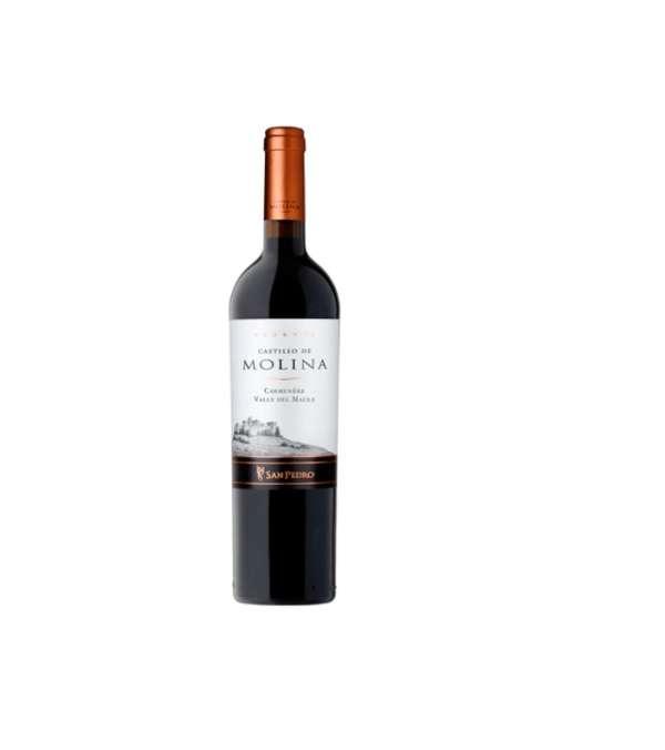 Castillo De Molina Carmenere 6 Botellas
