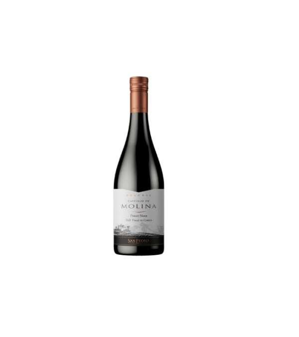 Castillo De Molina Pinot Noir 6 Botellas