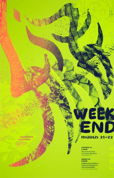 CalArts poster: Lizard Weekend by Henrique Eira Jessica Lee