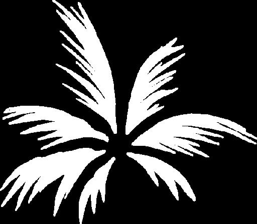 Caliva Palm Logo White