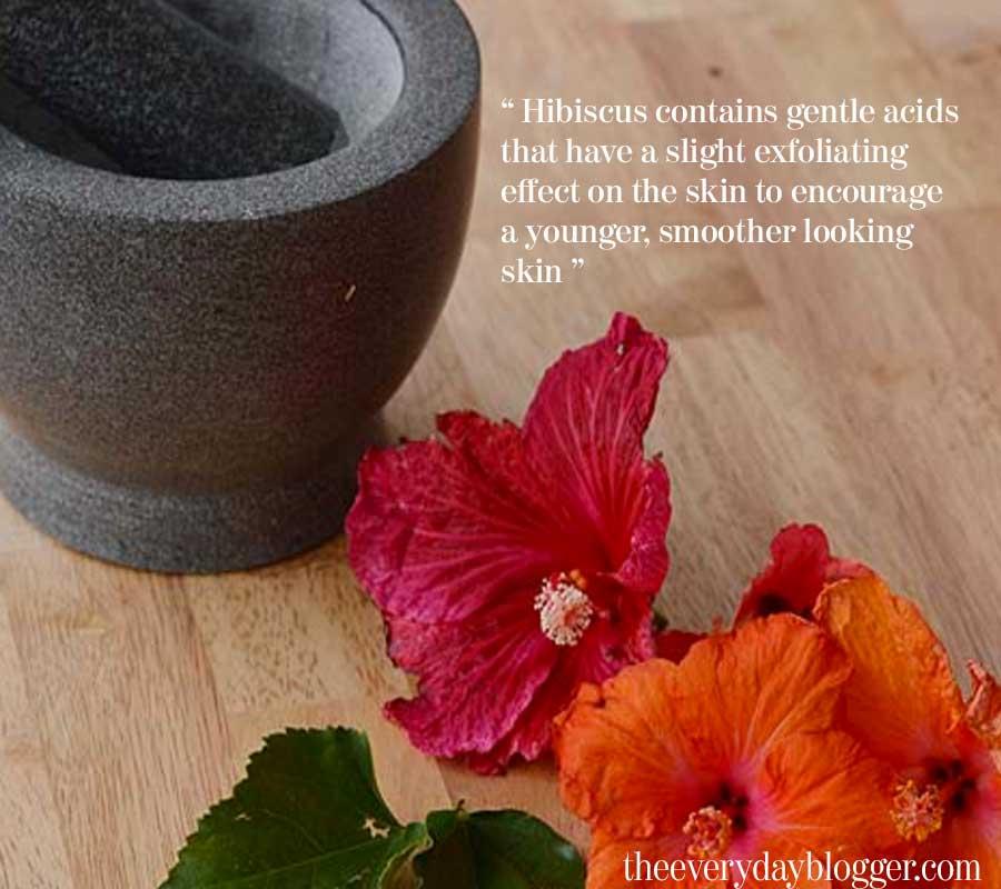 hibiscus powder uses