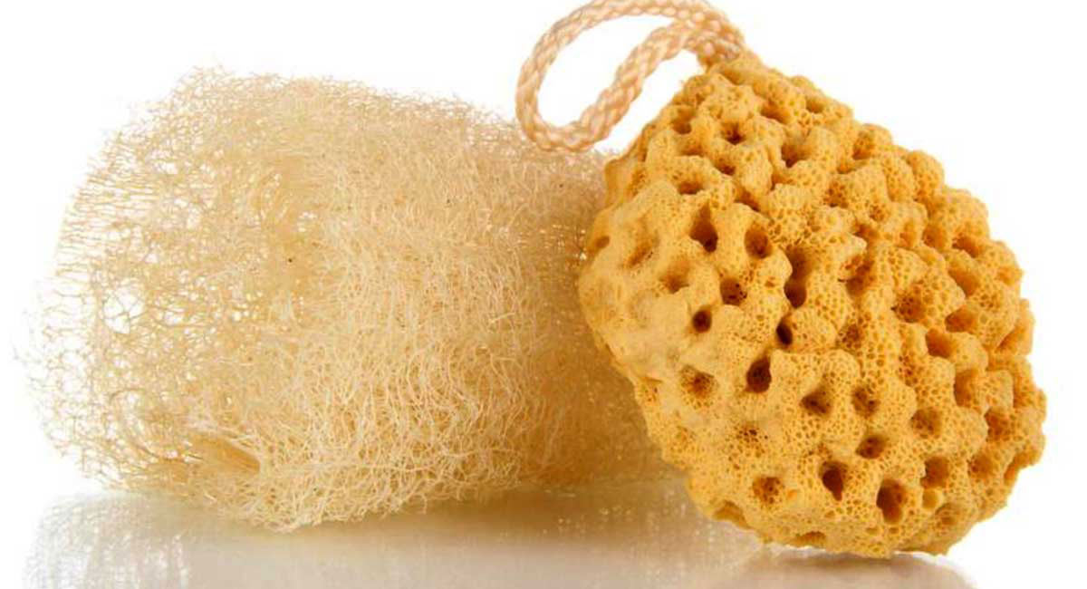 Ditch Your Loofah