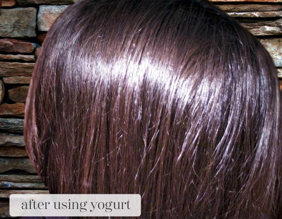 Yogurt for hair