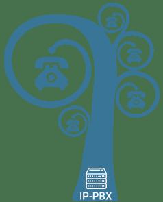VoIP Trunk van Callvoip