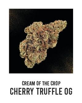 CreamoftheCrop_CherryTruffleOG_Hellapaxx_Cannabis_Delivery_CampNova