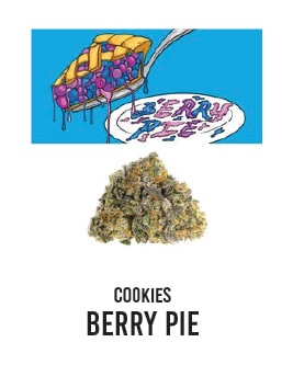 Cookies_BerryPie_HellapaxxDelivery_CampNova_Flower_THC_Berner