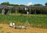 france: dynamic agrivoltaism