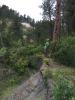 Un géologue de RESPEC effectue des reconnaissances le long de la vallée intérieure escarpée du glissement de terrain pour l'accès de la route du forage. L'excroissance est visible à l'arrière-plan, exposant la formation Jurassic Morrison.