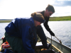 Researchers monitoring the thermal stratification in Toolik Lake