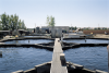 A Campbell Scientific system continually monitors and controls water quality in each of 12 individual tanks at the Stolt Sea Farm facility in Elk Grove, California. The tanks house sturgeon, raised to produce premium caviar.