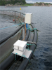 Typical installation at a fish farm