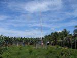 costa rica: banana production