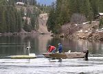 clark fork river: water quality
