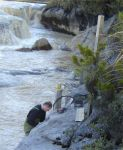 new zealand: water quality monitoring