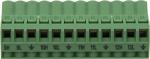 30371