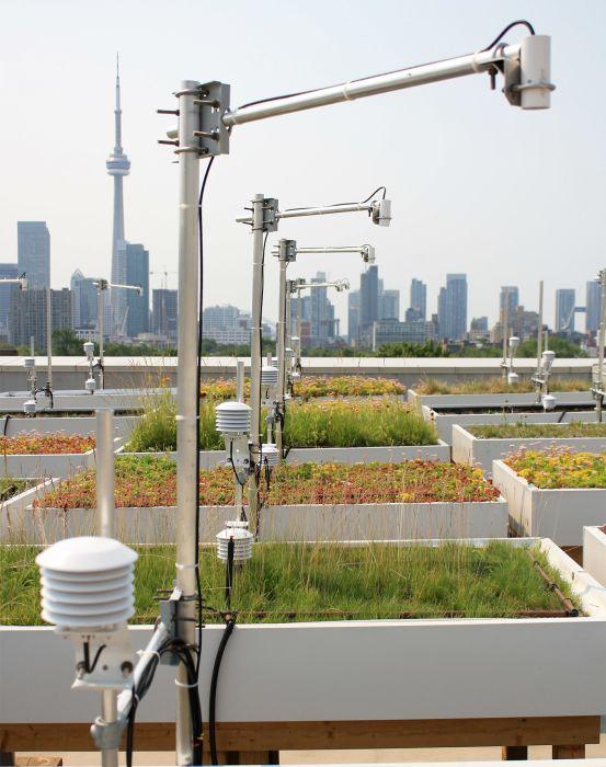 toronto, canada: green roofs