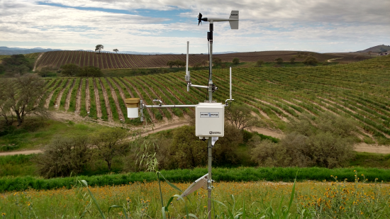Weather station in vineyard