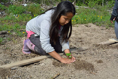 Indigenous girl planting in a community garden