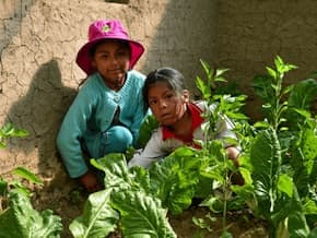 Two Bolivian sisters work in their family vegetable garden