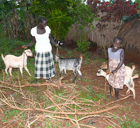 Abiriya and her family with their three goats