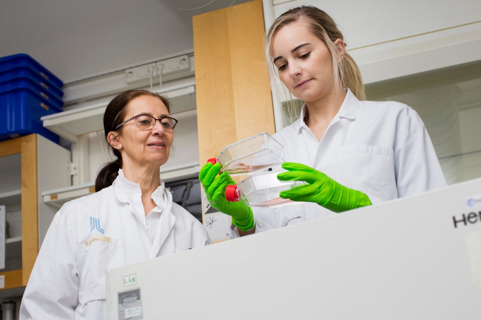 Tina Dalianis och doktorand Linnea Haeggblom undersöker tumörceller som odlas i flaskor