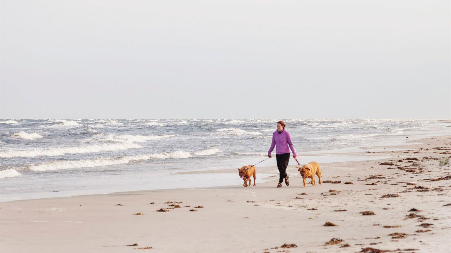 En medelålders kvinna går på en strand med två hundar.