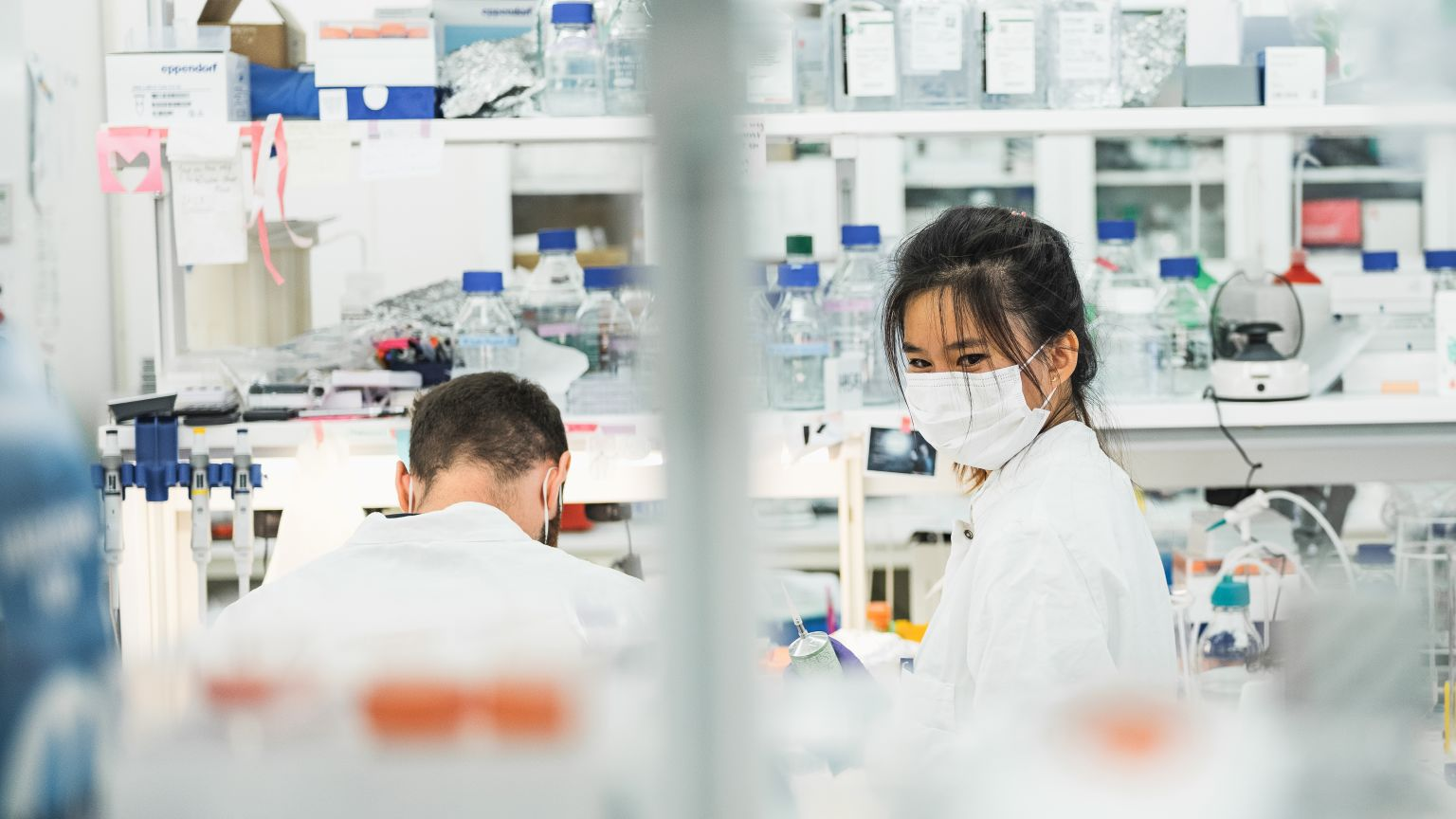 Två forskare med munskydd i ett laboratorium på SciLifeLab i Stockholm