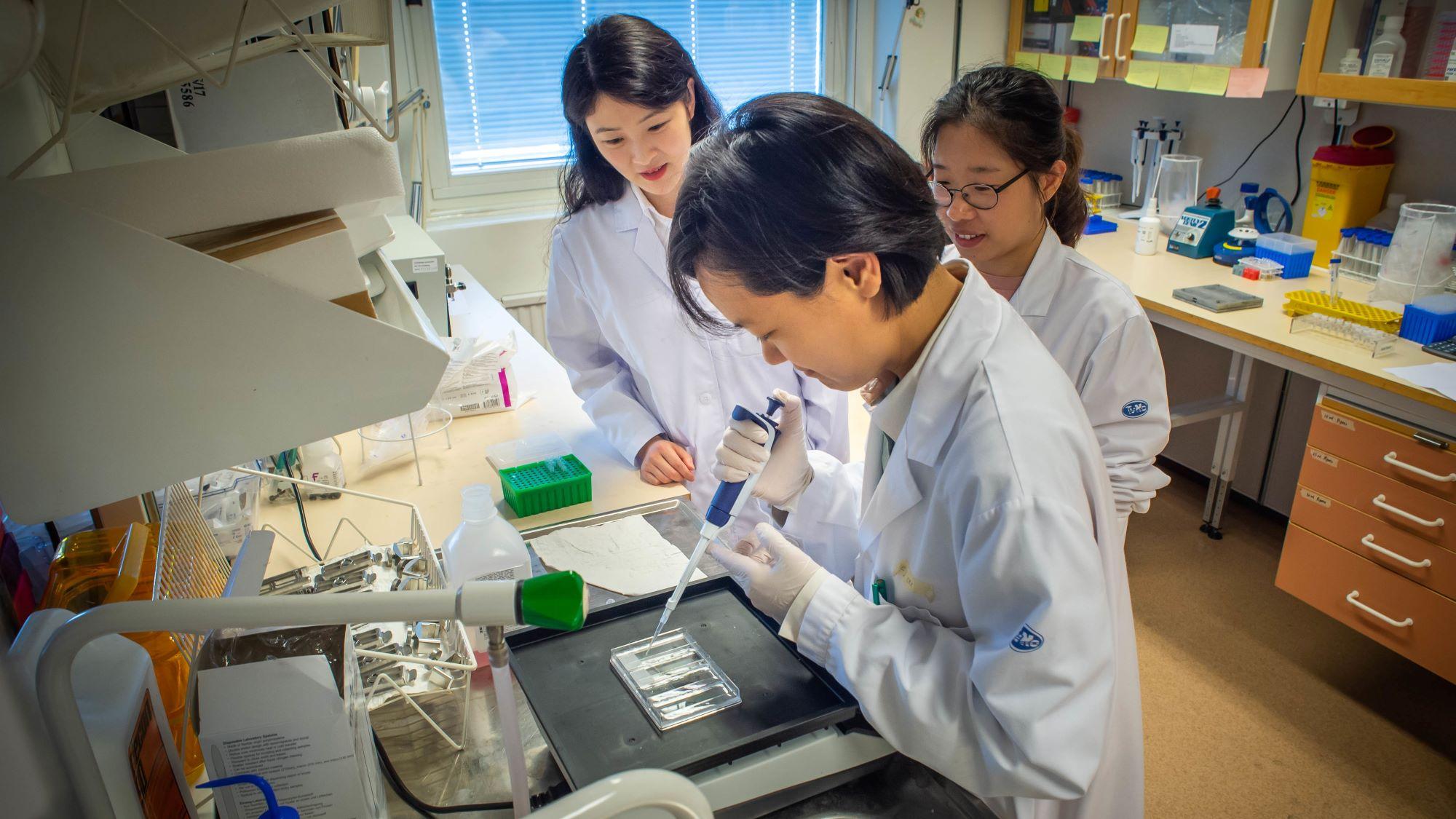 Tre personer arbetar i ett laboratorium.