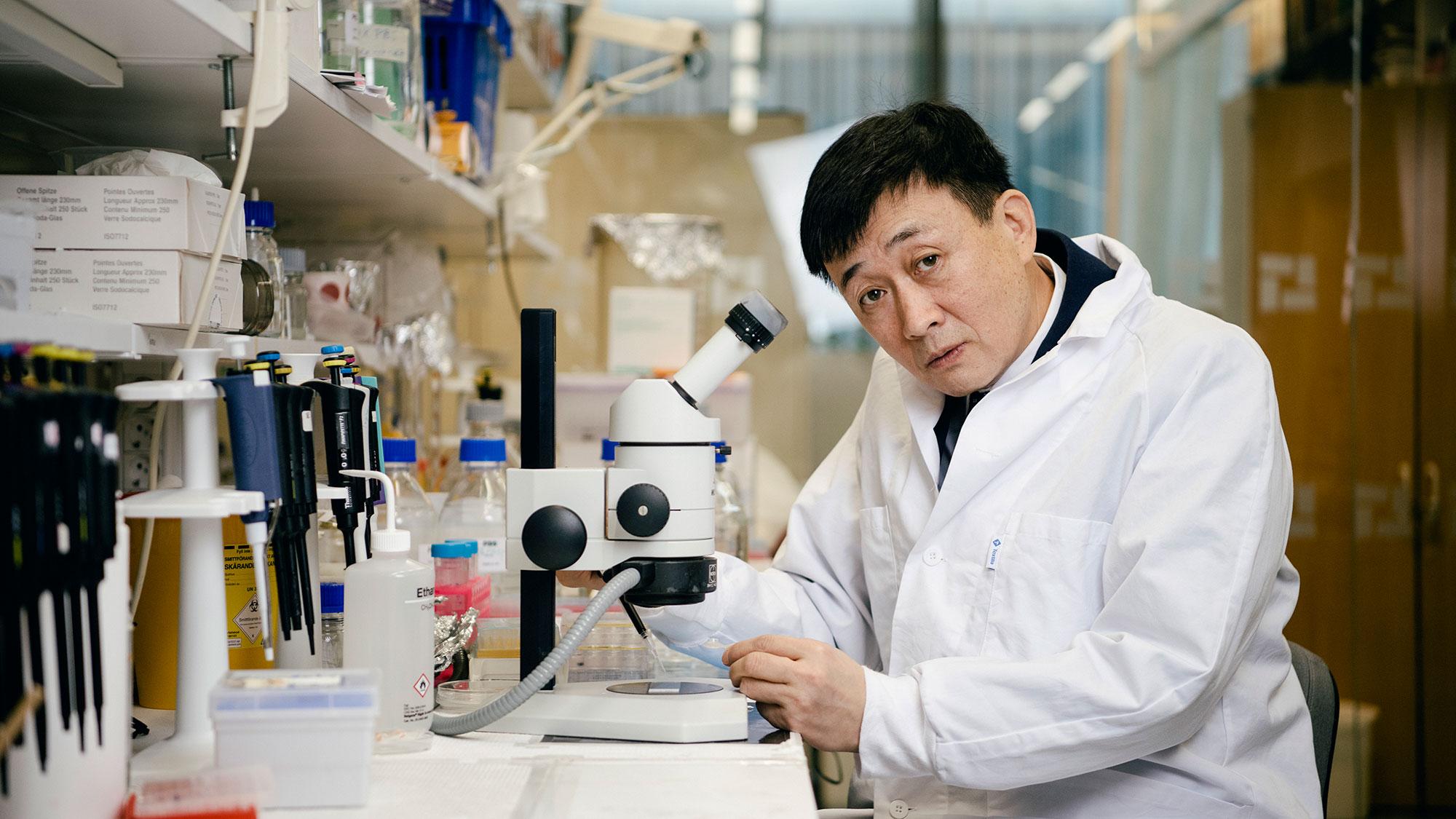 Forskaren Yihai Cao vid sitt stetoskop på Karolinska institutet