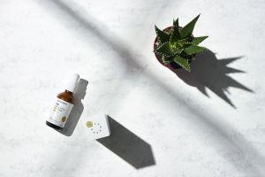 CBD Skin Cream with Aloe & Arnica